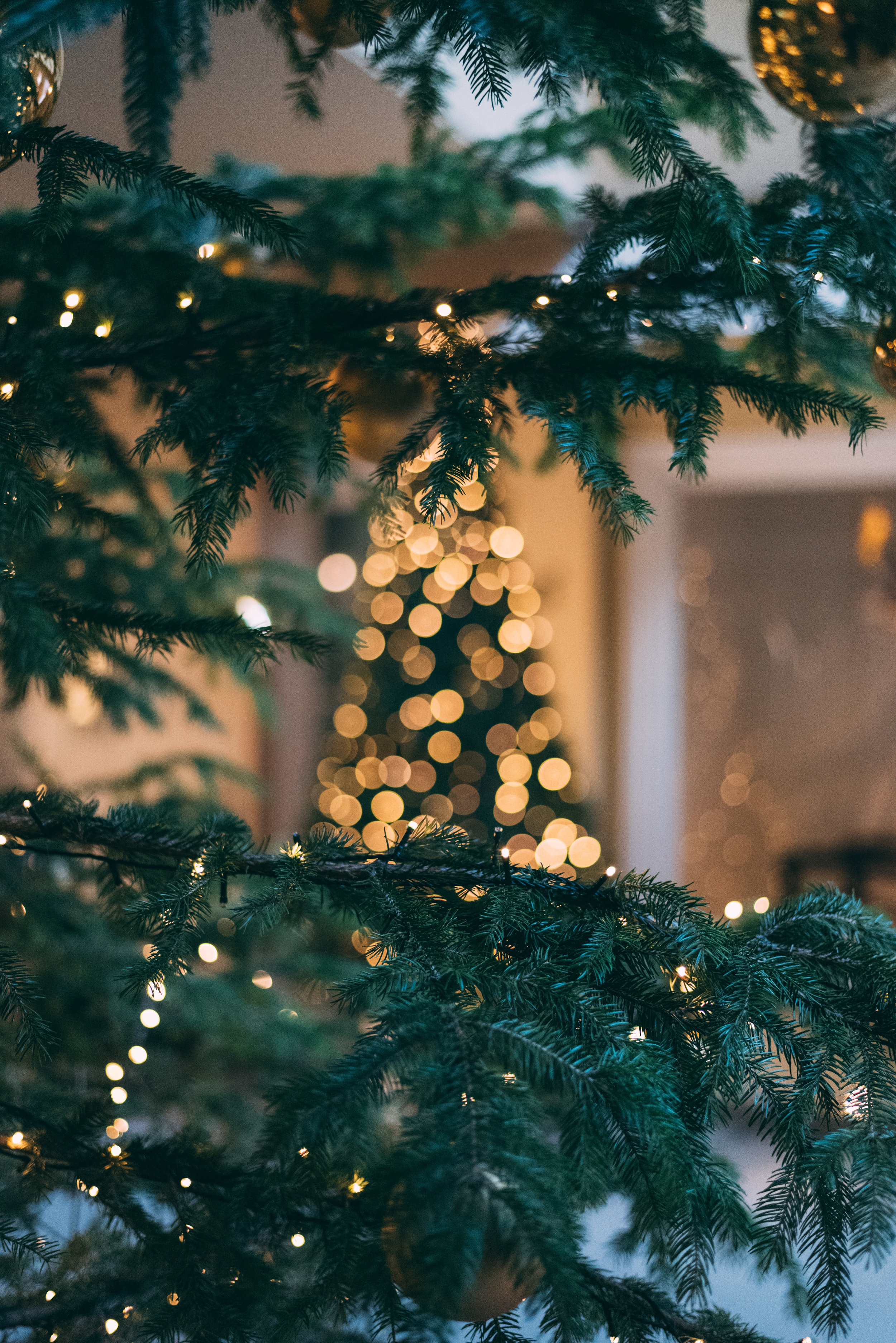 Whether you're planning a perfectchristmas dinner after the King's Theatre pantomime, or looking to treat your colleagues to a delicious festive party, we've got you covered with - CHRISTMAS AT HENRICK'S