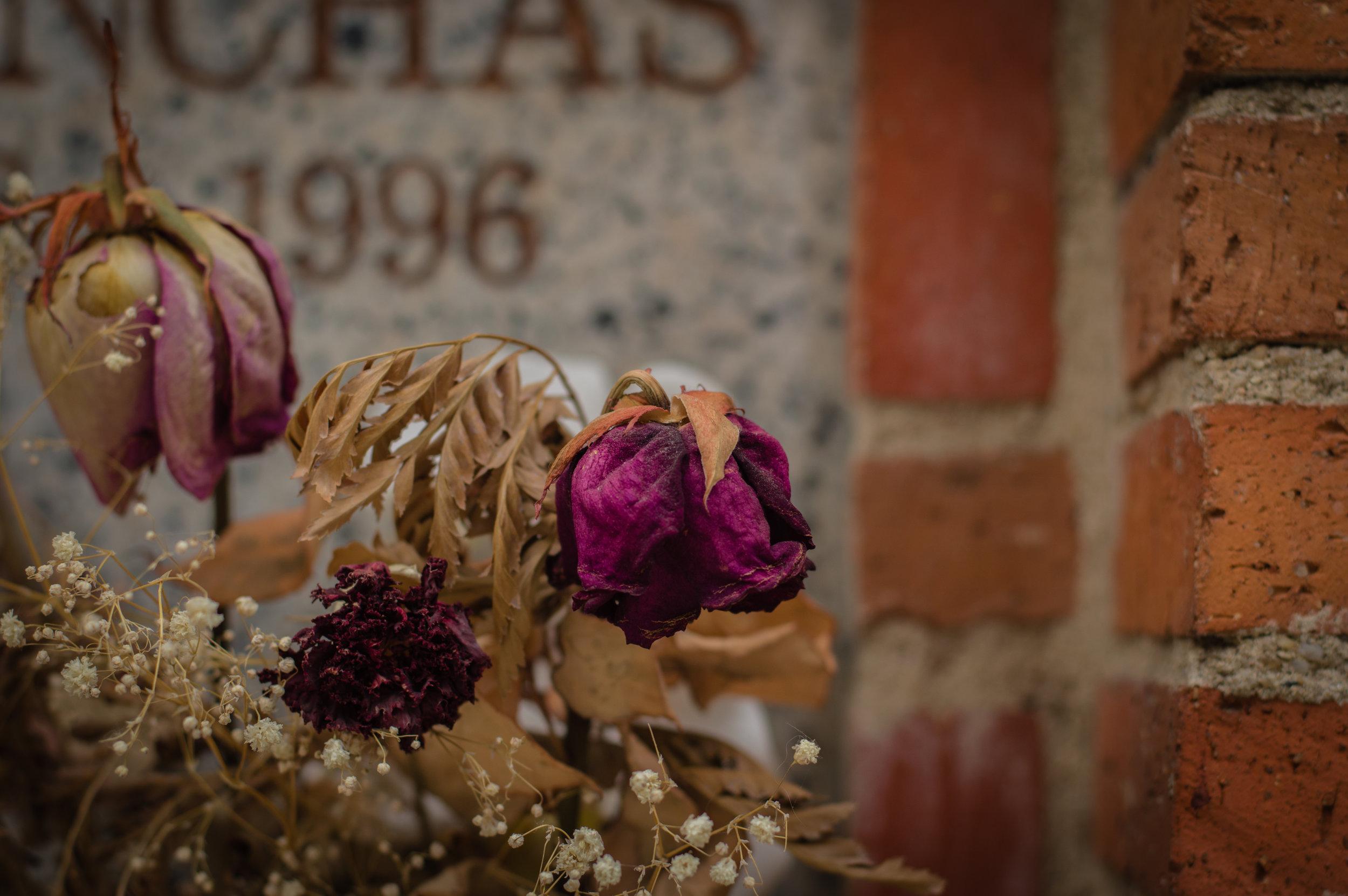 Flores en el cementerio (2 de 18).jpg