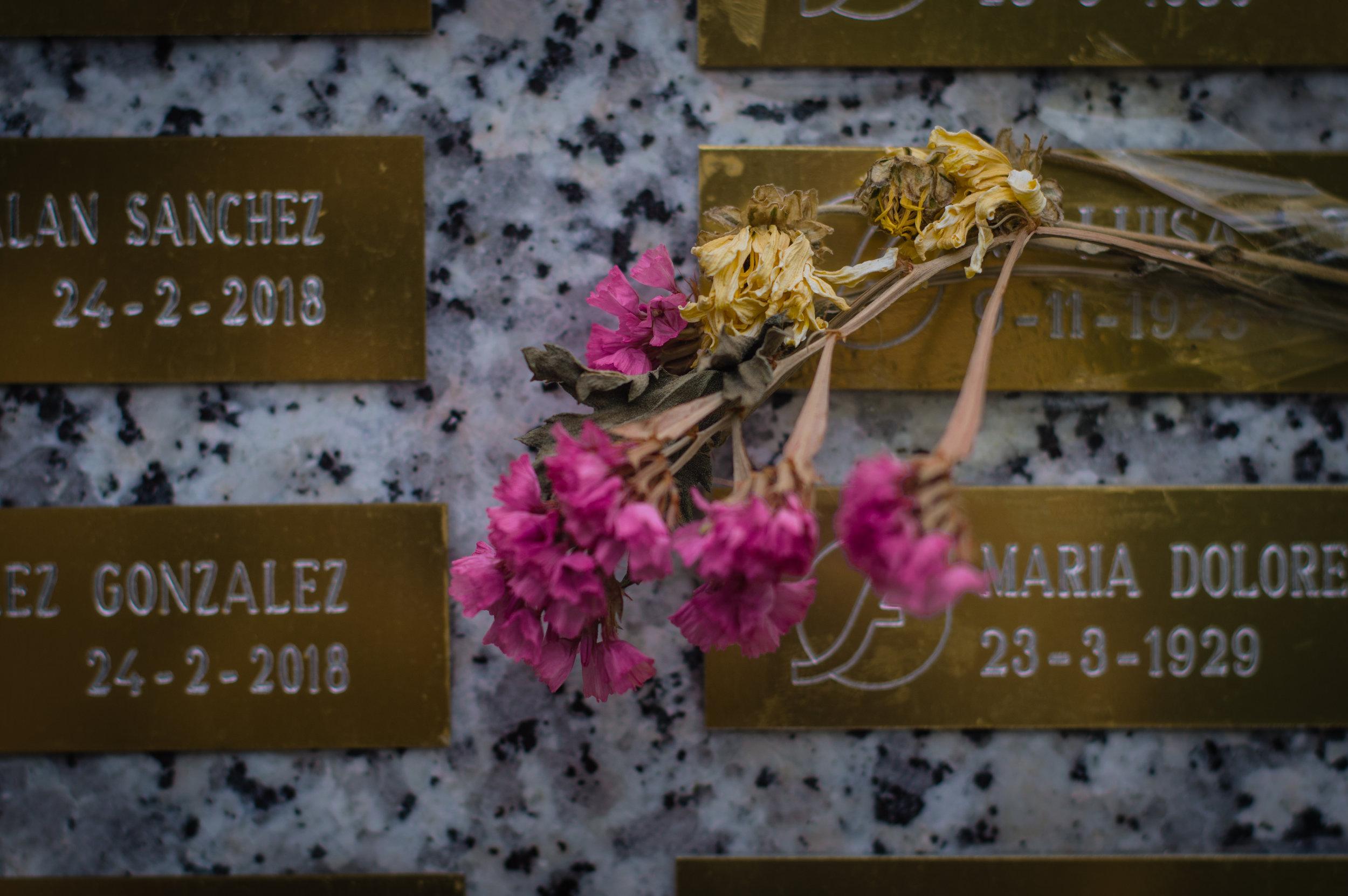 Flores en el cementerio (4 de 18).jpg
