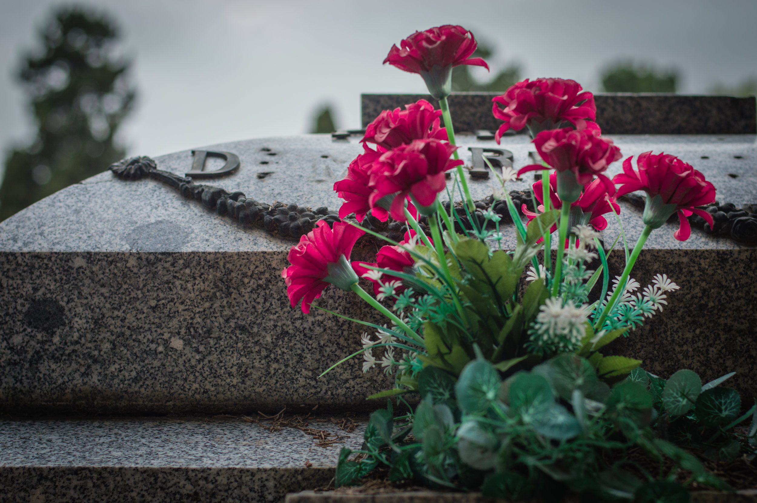 Flores en el cementerio (5 de 18).jpg