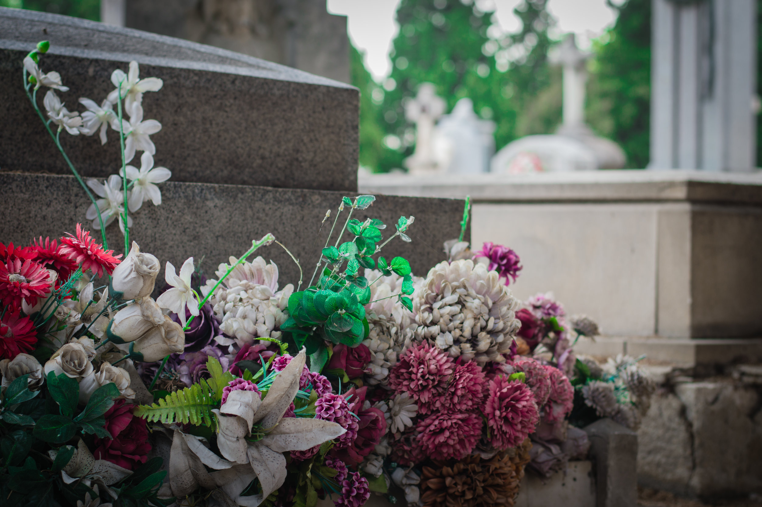 Flores en el cementerio (7 de 18).jpg