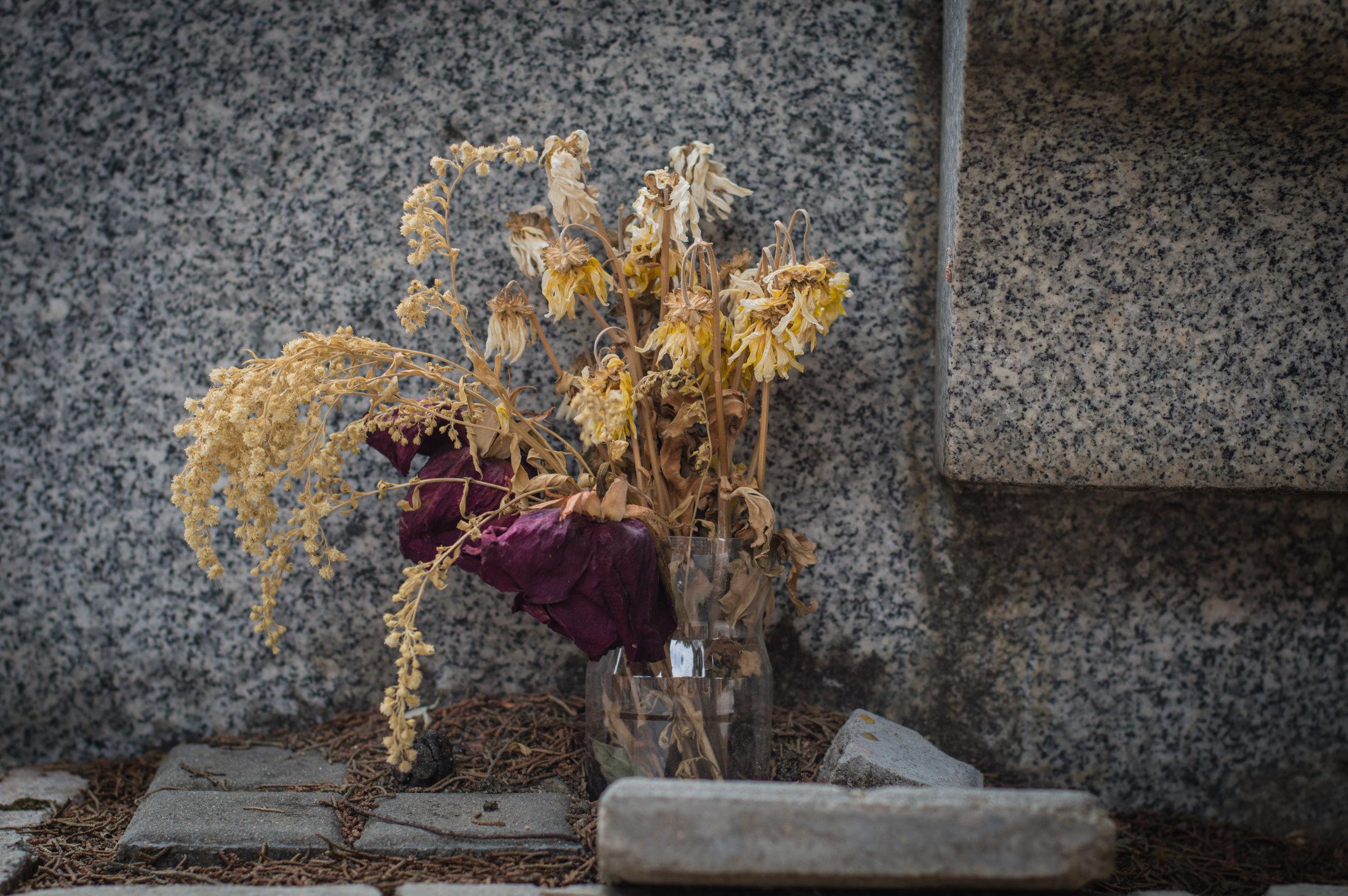 Flores en el cementerio (10 de 18).jpg