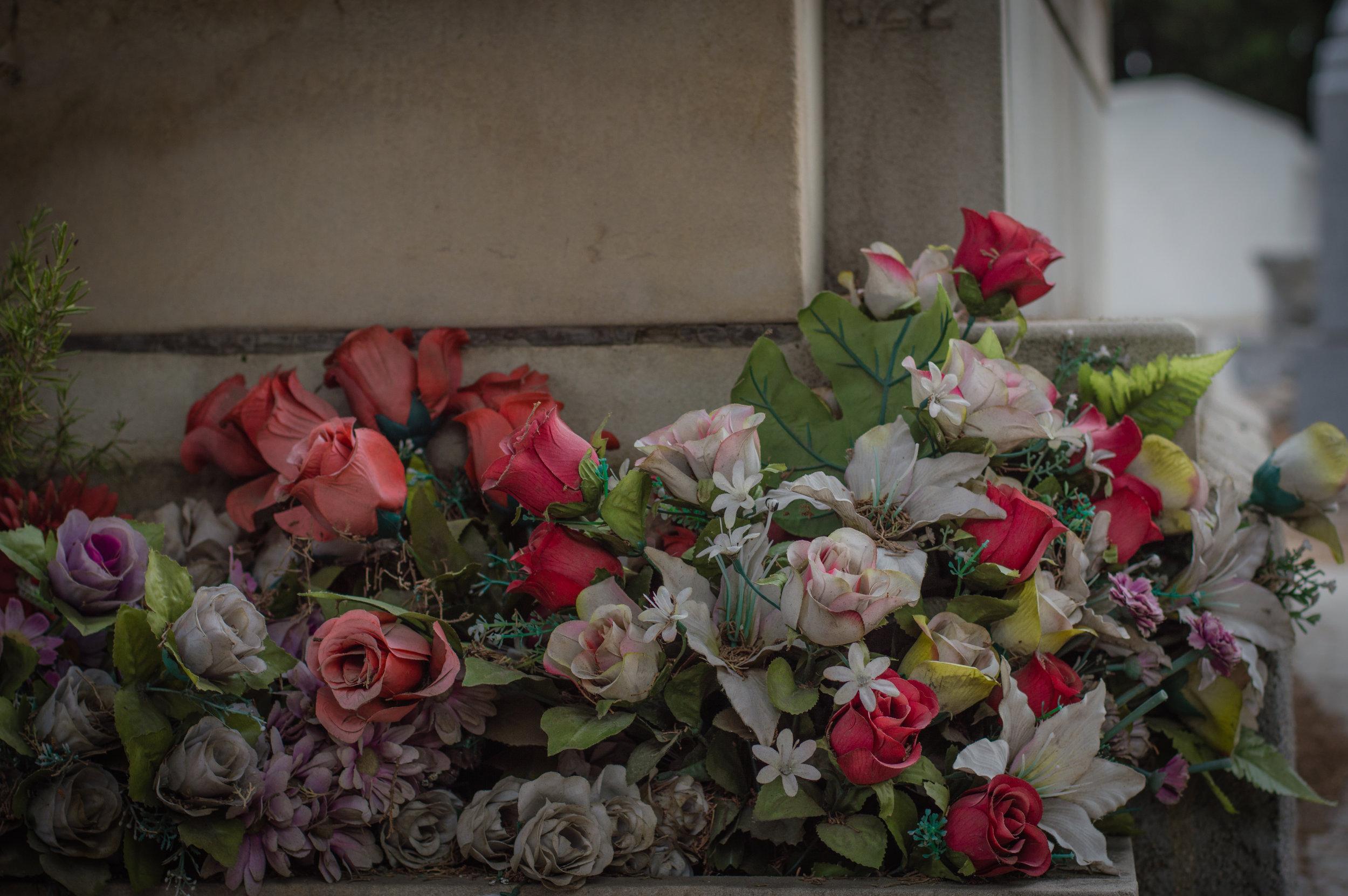 Flores en el cementerio (11 de 18).jpg