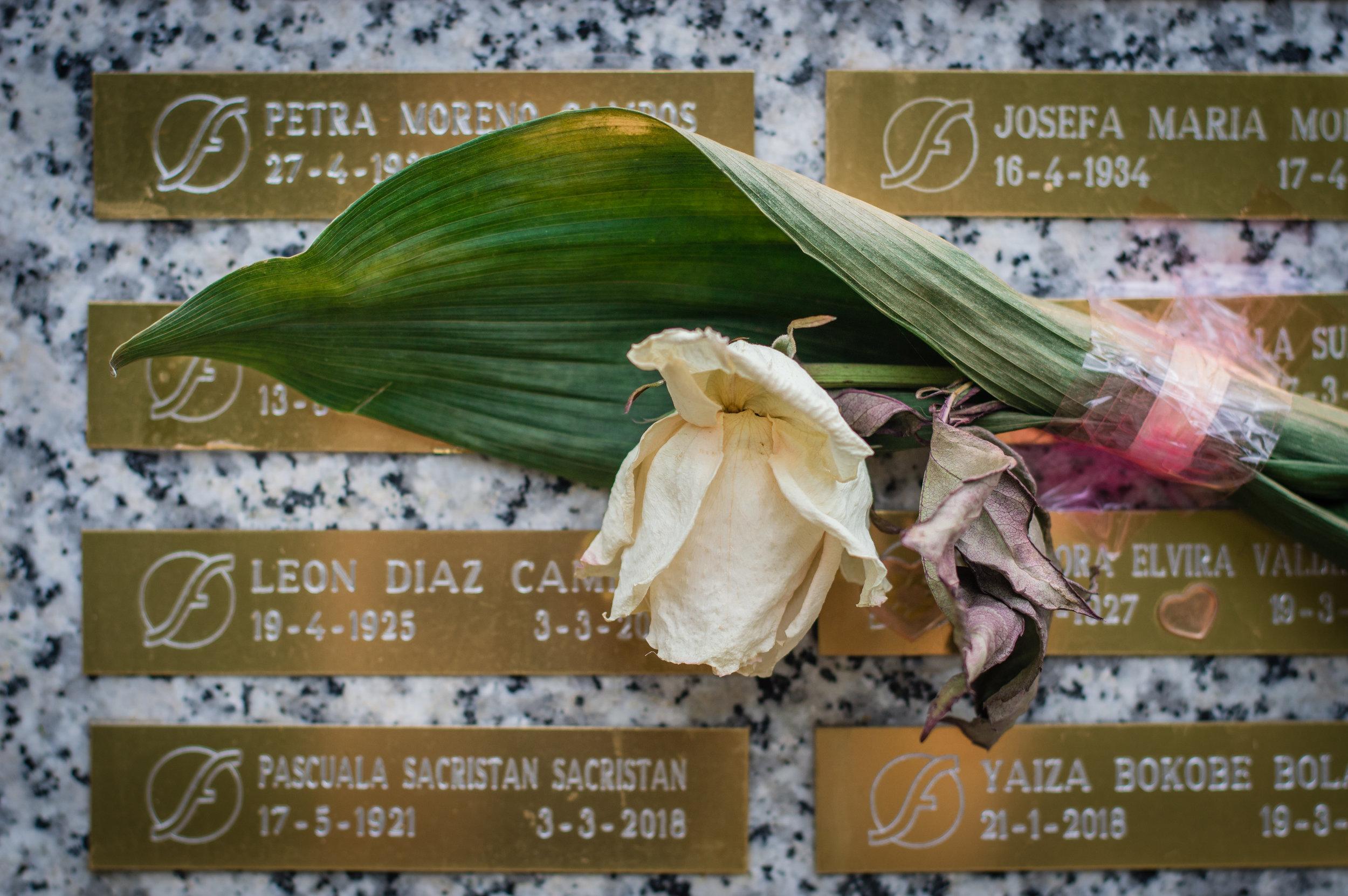 Flores en el cementerio (12 de 18).jpg