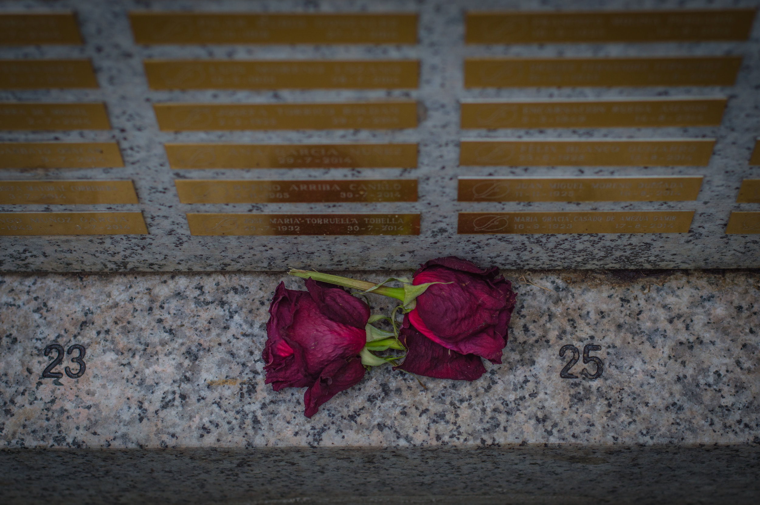 Flores en el cementerio (14 de 18).jpg