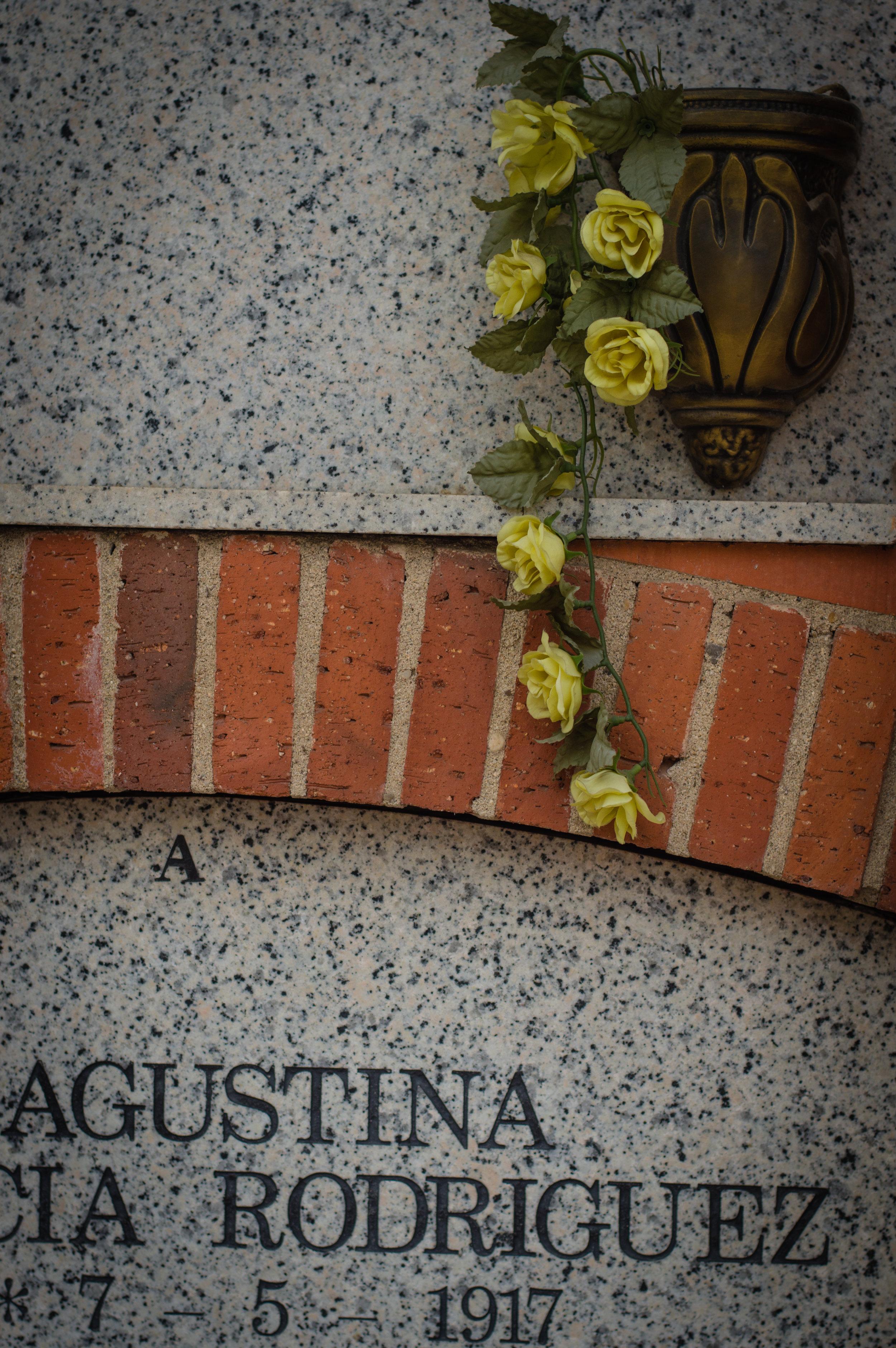 Flores en el cementerio (16 de 18).jpg