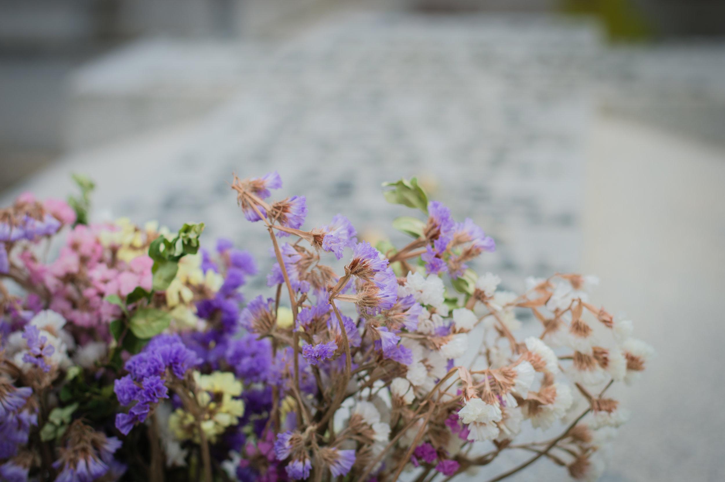 Flores en el cementerio (17 de 18).jpg
