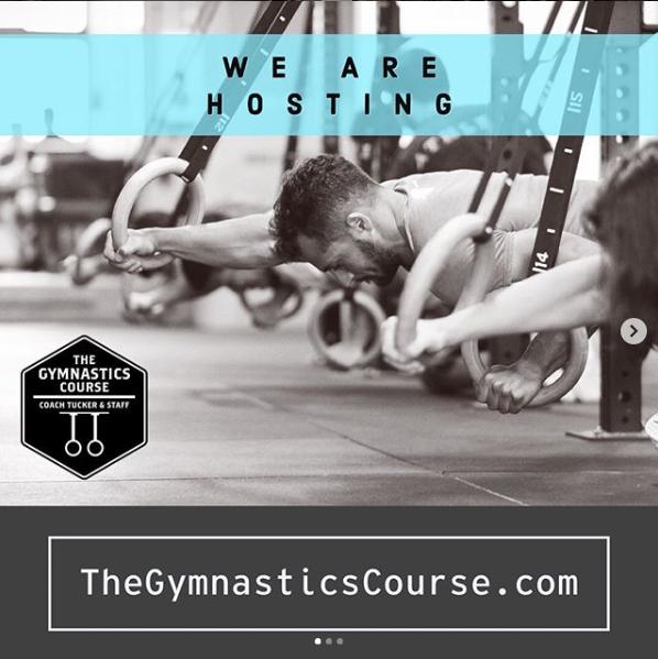 We are Hosting The Gymnastics Course on November 9th, 2019 (Registration Link Below)