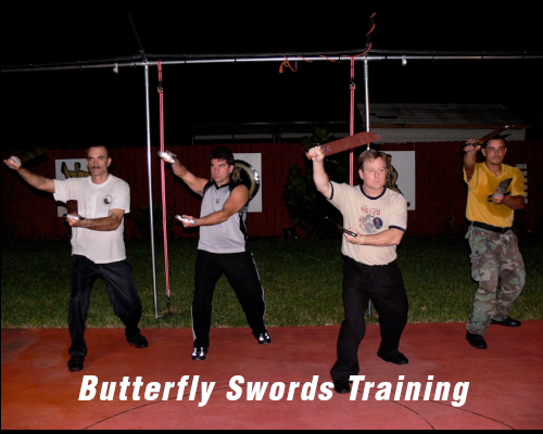 butterfly-swords.png