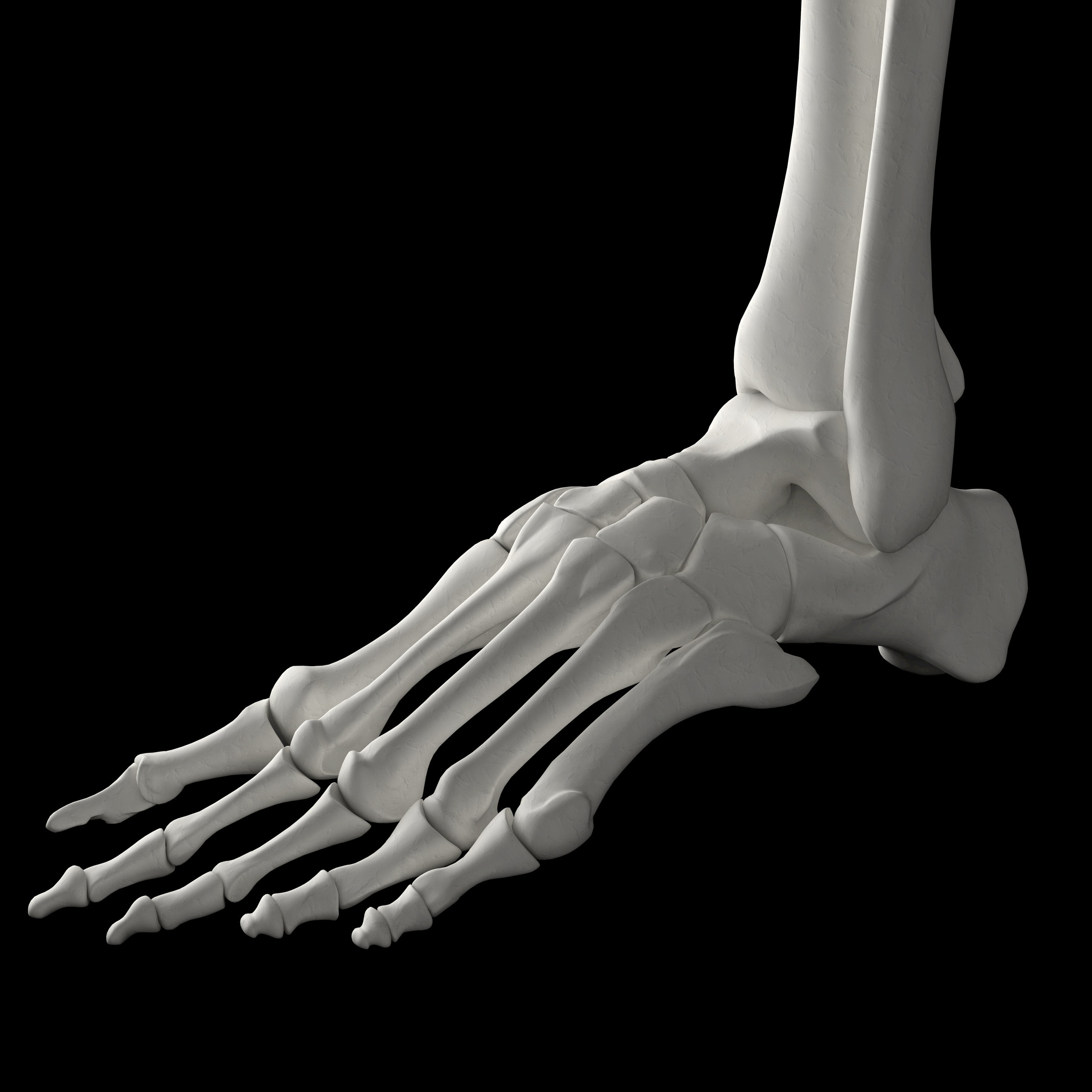 lackawanna ny podiatrist is an expert in treating foot and ankle fractures