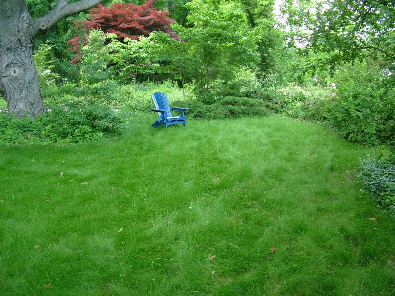Harris lawn - 1 chair.jpg