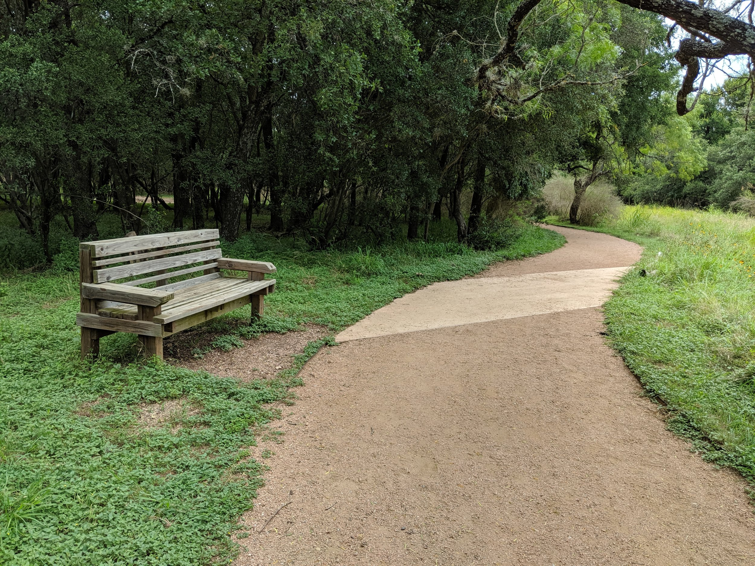 Park Benches - All trails have benches dispersed throughout the park. The benches offer a nice view while taking a break from exploring.