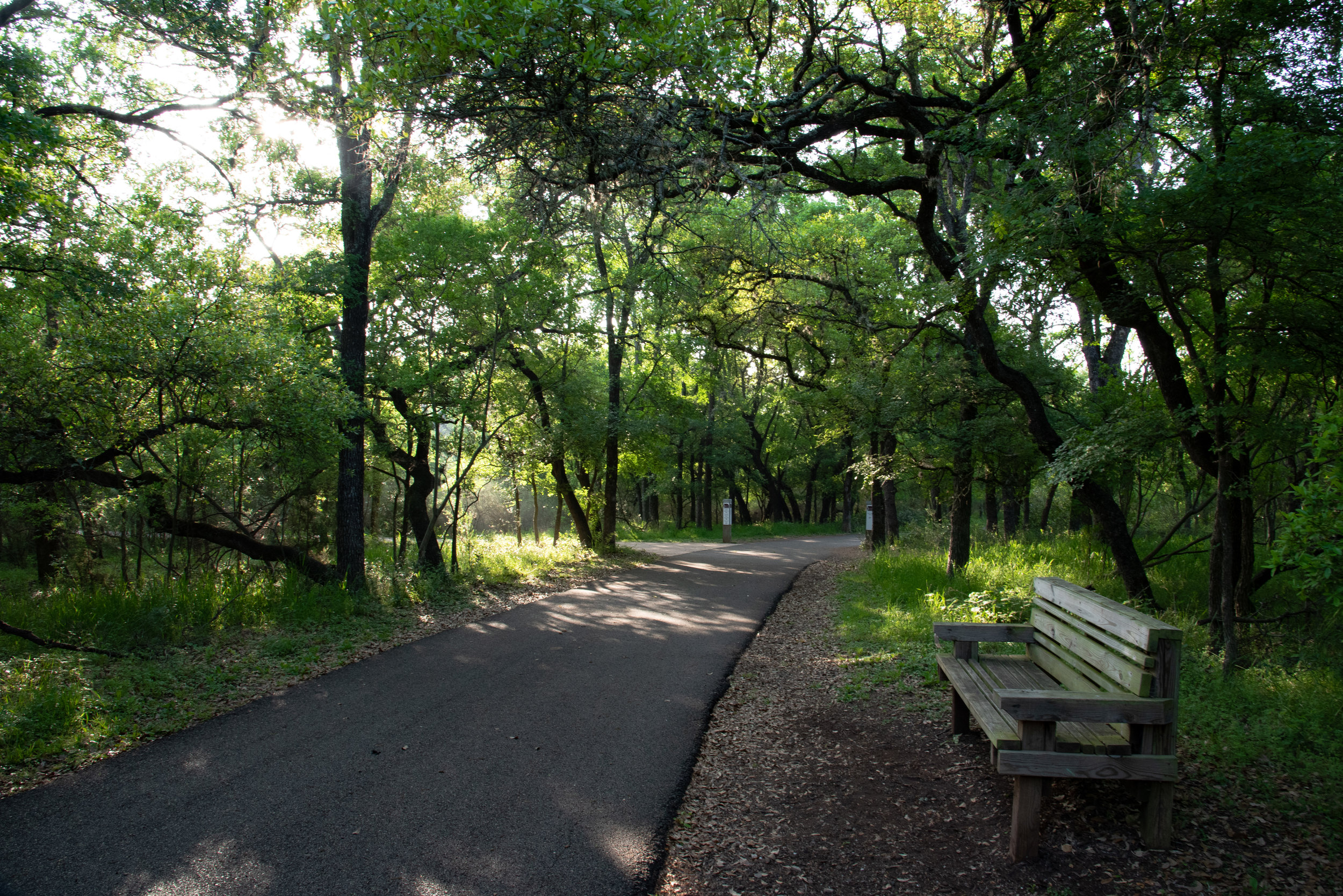 Shade - Shade is a precious asset in South Texas and the dog parks, playgrounds, picnic areas, and trails all have some shady areas.