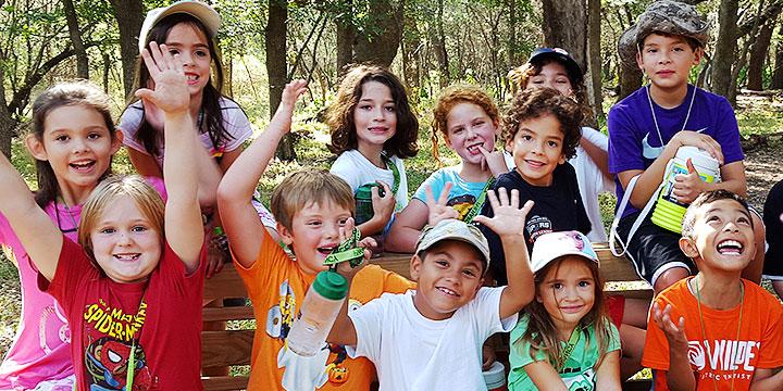 header-childrens-vegetable-garden.jpg