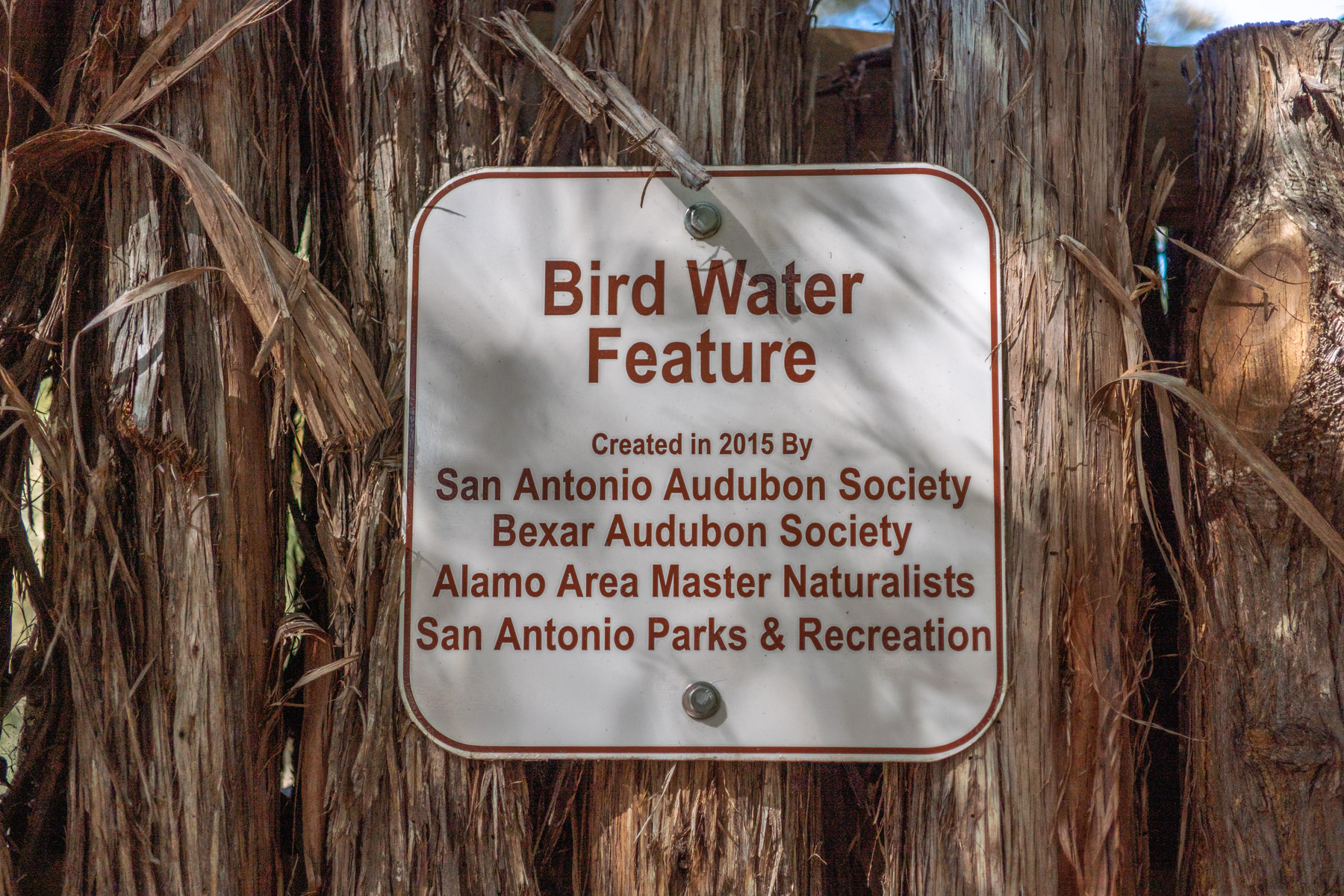 Bird Water Feature