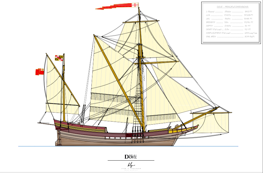 Our architect Iver Franzen's artistic rendering of his sail plan for the new Maryland Dove. From aft to forward, bottom to top: A bonneted lateen mizzen, brailing sprit rigged main with reefing nettles, square topsail, inboard staysail with reef nettles, two outboard flying jibs, and one square spritsail.