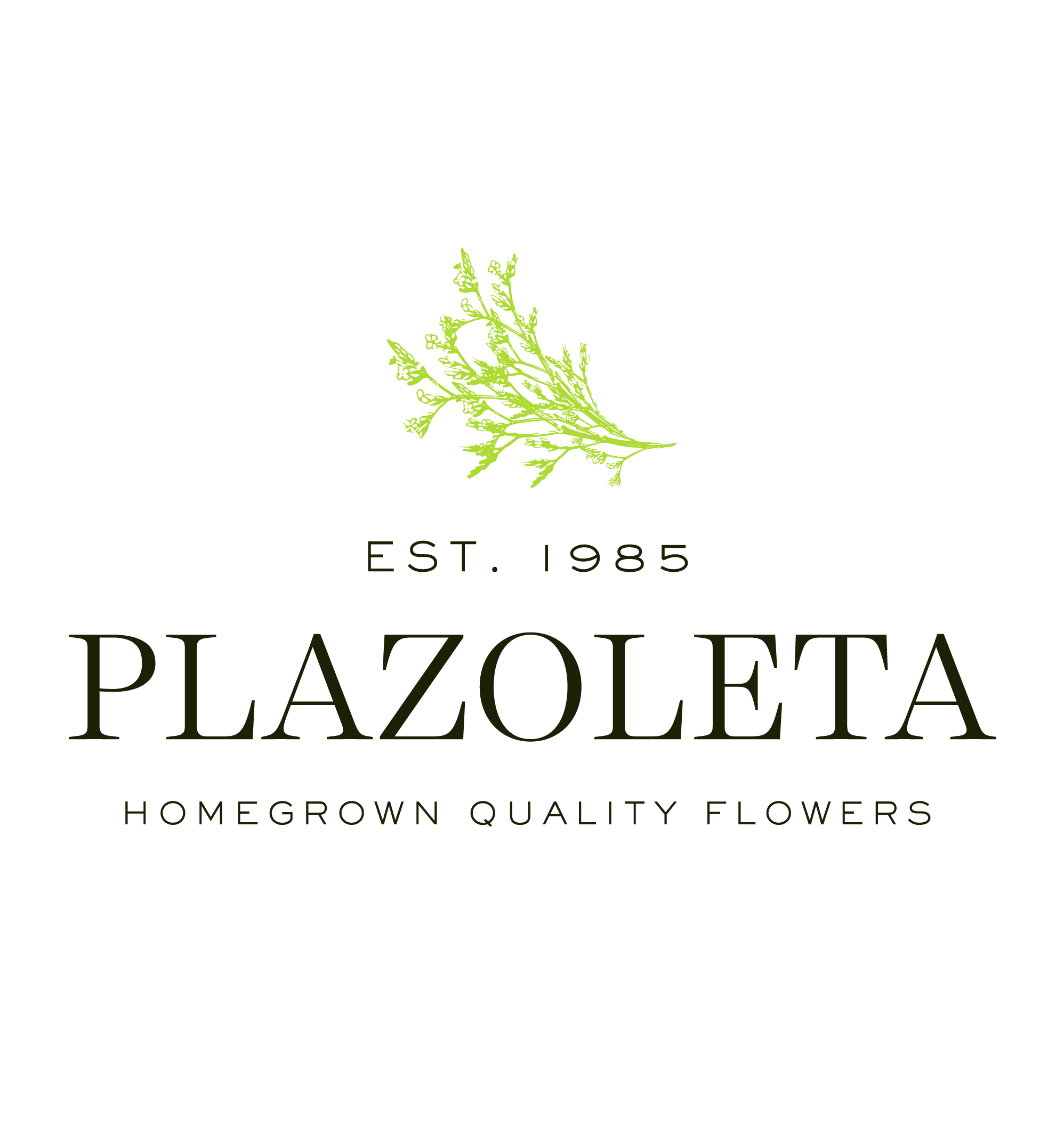 Plazoleta Flowers