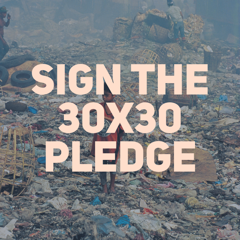 sign the 30x30 pledge.png
