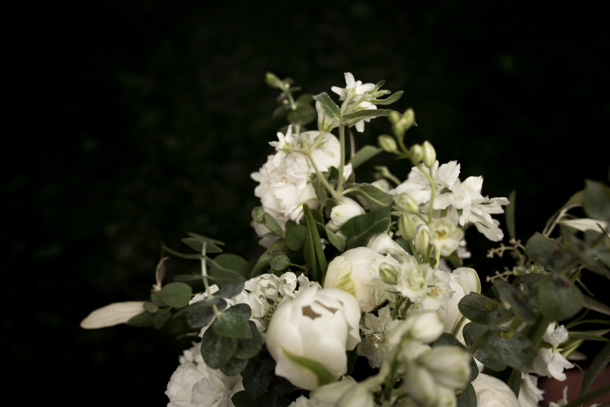 web photos-9.JPG