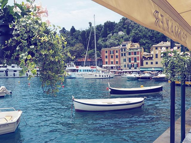Portofino🇮🇹Where coffee costs more than I make in a year and where Dolce Gabanna lives in a castle by the water👌🏼