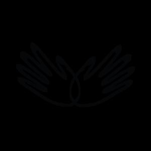 chrysalis+logo+icon-04.png