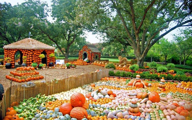 Autumn-at-the-Arboretum.jpg