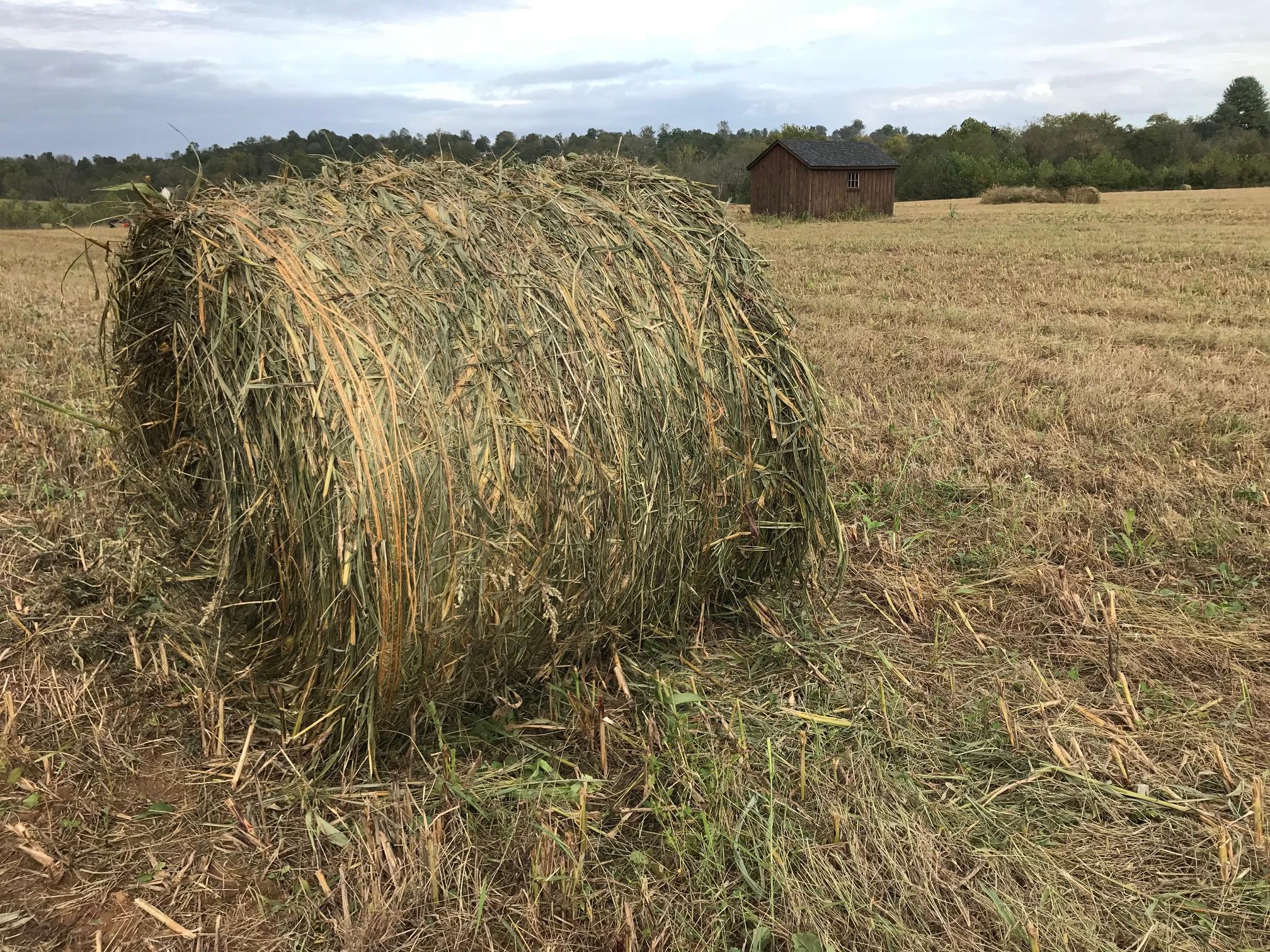 1812 - Farm Pic.jpg