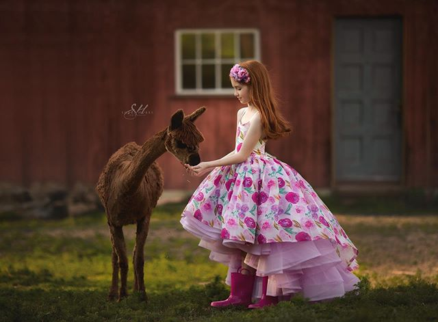 Ohhh you know....Just a girl in a pretty dress hangin out on the farm feeing the cute alpacas. 💗  #kidsmood #galleryoflightfeature #thesincerestoryteller #cpcfeature #pixel_kids #theartofchildhood #thehonestlens #dearest_viewfinder #hellostoryteller #pixelart #best_photo_kids #kidsphotographer #allthingsofbeauty #kidstyle #galleryoflightfeature #naturallight #photooftheday #portraitvision #themedphotoshoot #simplychildren #sherihubbsphotography #500px #magicofchildhood #awardwinning #pursuitofportraits #justgoshoot #fstoppers #oregonphotographer #eugeneoregonphotographer #springfieldoregonphotography