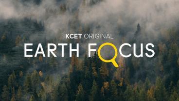 earthfocus.jpg
