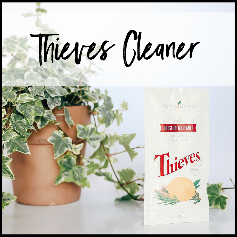 Young Living Essential Oils Premium Starter Kit Thieves Household Cleaner.png