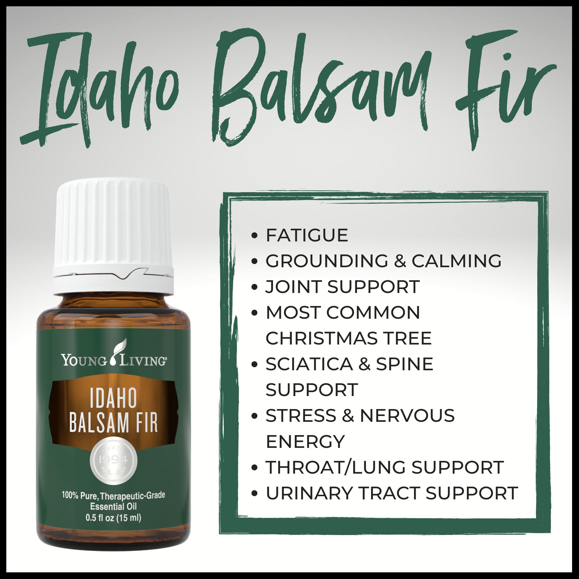 Idaho Balsam Fir