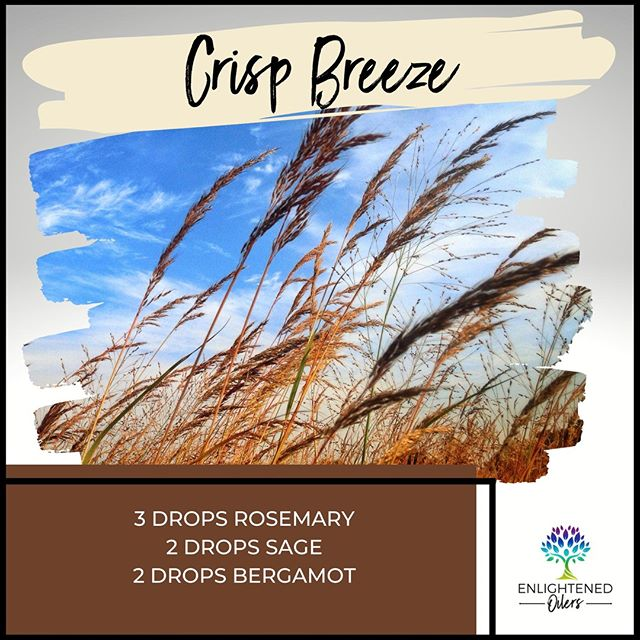 Crisp, fall air is delightful.  Today's blend is the perfect balance of herbs and sweetness. Like fresh air, this blend will bring clarity of mind and uplift your spirits.  What are you hoping to get clarity on today?  Crisp Breeze  3💧Rosemary  2💧Sage  1💧Bergamot   * * * * #diffuserrecipes  #enlightenedoilers #essentialoils #youngliving #naturalliving #wellness #plantbased #essentialoilswork #essentialoilsrock #essentialoilsforlife #oilsforeverything  #yleo #younglivingessentialoils #younglivingeo #theresanoilforthat #nontoxic #holistichealth  #naturalsolutions #oilylife #oilymom #oilyfamily #crispair #fall #rosemary #sage #bergamot #sweetherbs