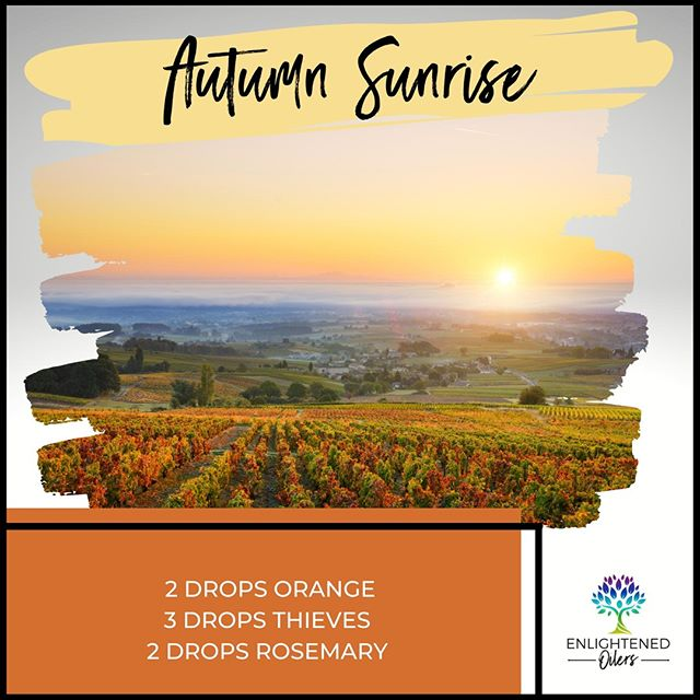 Take a moment to take in this breathtaking view!  What a gorgeous sunrise!  Where have you been that has the most beautiful view you've ever seen?  Autumn Sunrise 2💧Orange  3💧Thieves  2💧Rosemary * * * * #diffuserrecipes  #enlightenedoilers #essentialoils #youngliving #naturalliving #wellness #plantbased #essentialoilswork #essentialoilsrock #essentialoilsforlife #oilsforeverything  #yleo #younglivingessentialoils #younglivingeo #theresanoilforthat #nontoxic #holistichealth  #naturalsolutions #oilylife #oilymom #oilyfamily #orange #thieves #rosemary #autumnsunrise #beautifulview