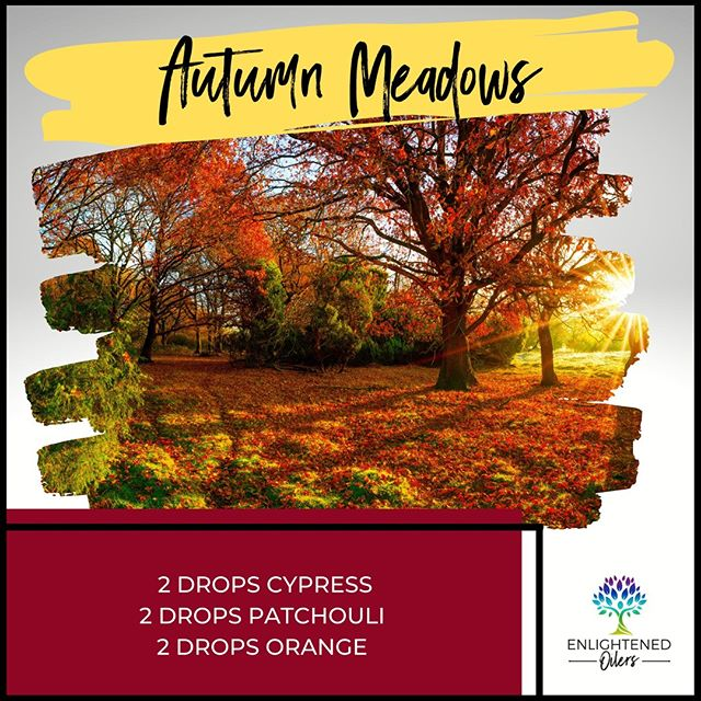 Just looking at this gorgeous fall masterpiece brings me such peace.  Who would you love to sit on the porch with looking out at this view?  What would you chat about?  Autumn Meadows 2💧Cypress  2💧Patchouli  2💧Orange   * * * * #diffuserrecipes  #enlightenedoilers #essentialoils #youngliving #naturalliving #wellness #plantbased #essentialoilswork #essentialoilsrock #essentialoilsforlife #oilsforeverything  #yleo #younglivingessentialoils #younglivingeo #theresanoilforthat #nontoxic #holistichealth  #naturalsolutions #oilylife #oilymom #oilyfamily #autumnmeadows #cypress #patchouli #orange #fall #changingcolors #fallleaves