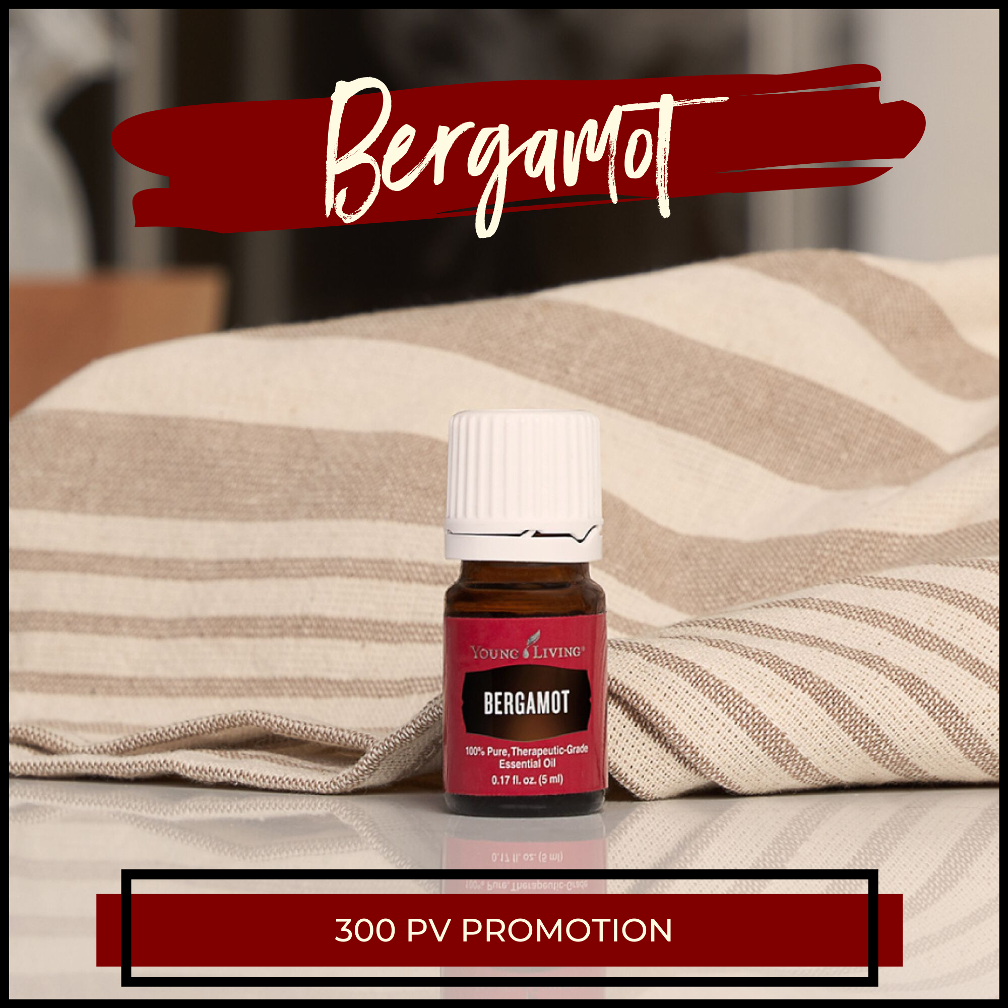 Young Living Monthly Promotions October 2019 Bergamot