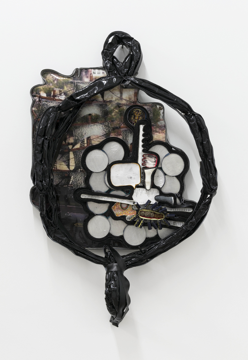 Gene Permutations  2019 Vinyl, leather, latex balloons, digital photographs, recycled batteries, Melaleuca Globifera seeds, metal, resin, and glass 40h x 27w x 3 1/2d inches