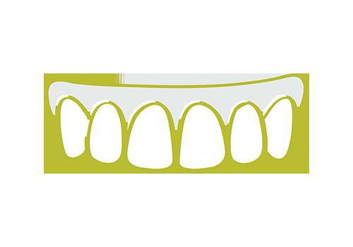 Partial Denture Care