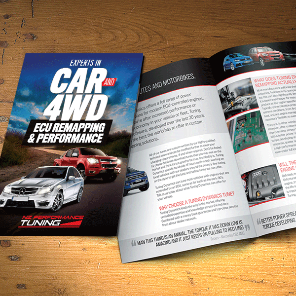 ECU Remap Brochure Design