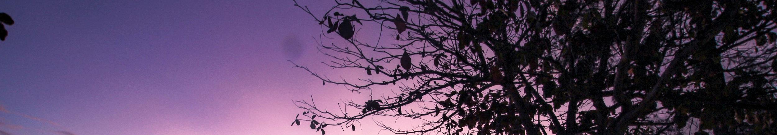 sky breath -