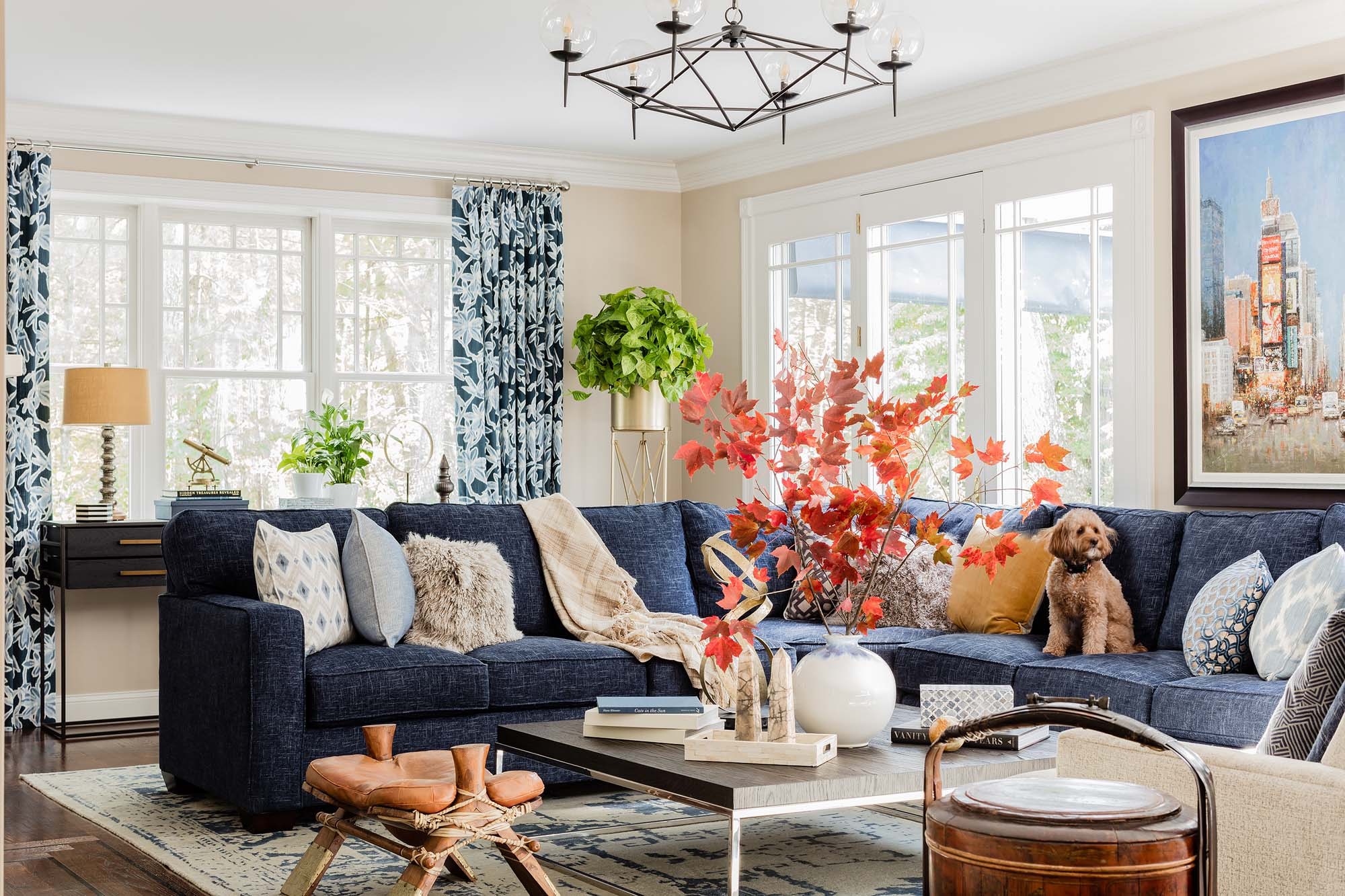 Living room with large sofa, wooden center table, and maple leaf branch decorations, rowan, worlds away, chandelier, dog, bassett, sectional, blue velvet sectional, rh, restoration hardware, nicholas oak coffee table, camel saddle, rice pot, duralee