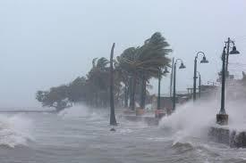 Hurricane Irma's impact