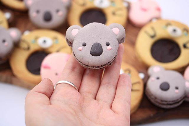 Koala macarons!! 🐨🐨🐨❤️ did I mention that a LOT of the recipes in my book can also be made vegan? 🌱 Including these! There will be non vegan and vegan options to make and decorate cakes, biscuits, doughnuts and meringues 😋 because a lot of my friends are vegan and I wanted to make sure that there are options there (plus of course vegan baking can be sooo tasty). 💚💚 Order from the link in my bio OR look in my story highlights for a link to get a SIGNED copy from @waterstones 📚💖💖 . . . . #baking #bake #koala #macarons #macaronstagram #yum #vegan #veganfood #veganrecipes #veganbaking #veganbakingrecipes #baker #food #bakingbook #kimjoybakes #bakingideas