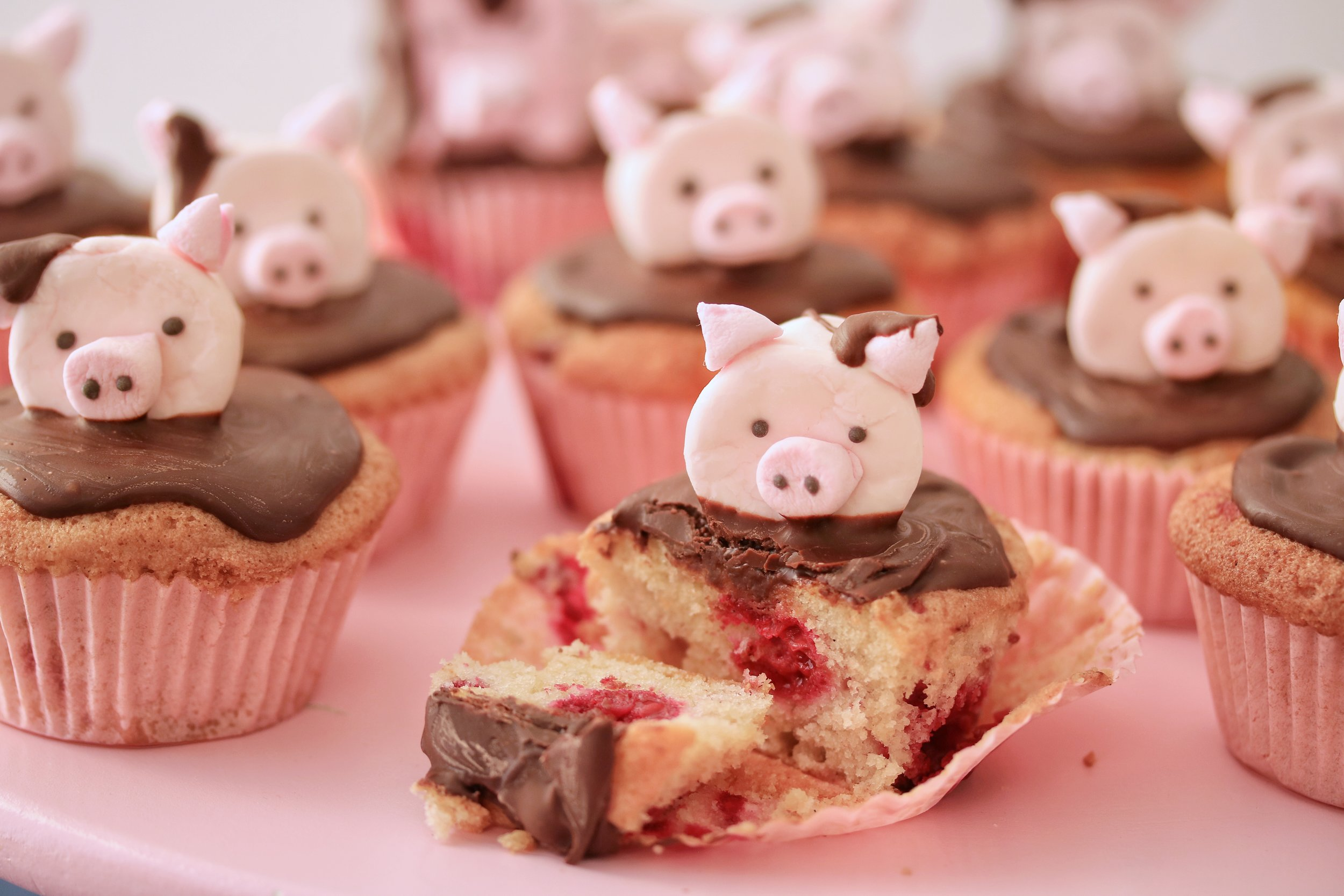 Raspberry and chocolate cupcakes with marshamallow 'pig' topper