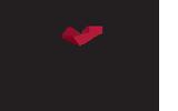 BrainMax logo