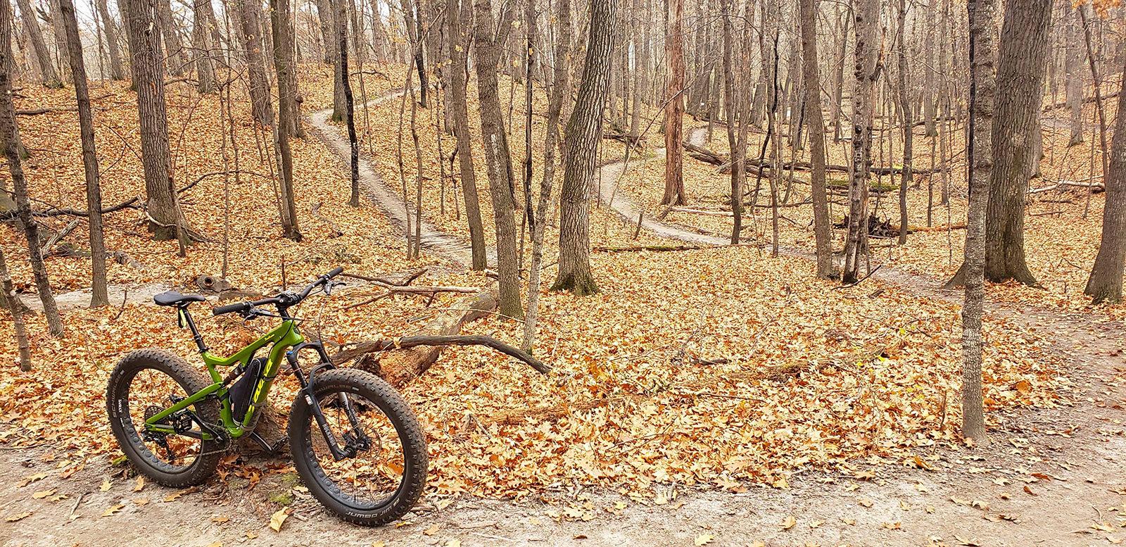 mountain-bike-fall-woods_1600.jpg