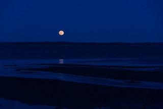 Moonrise Hulls Cove.jpg