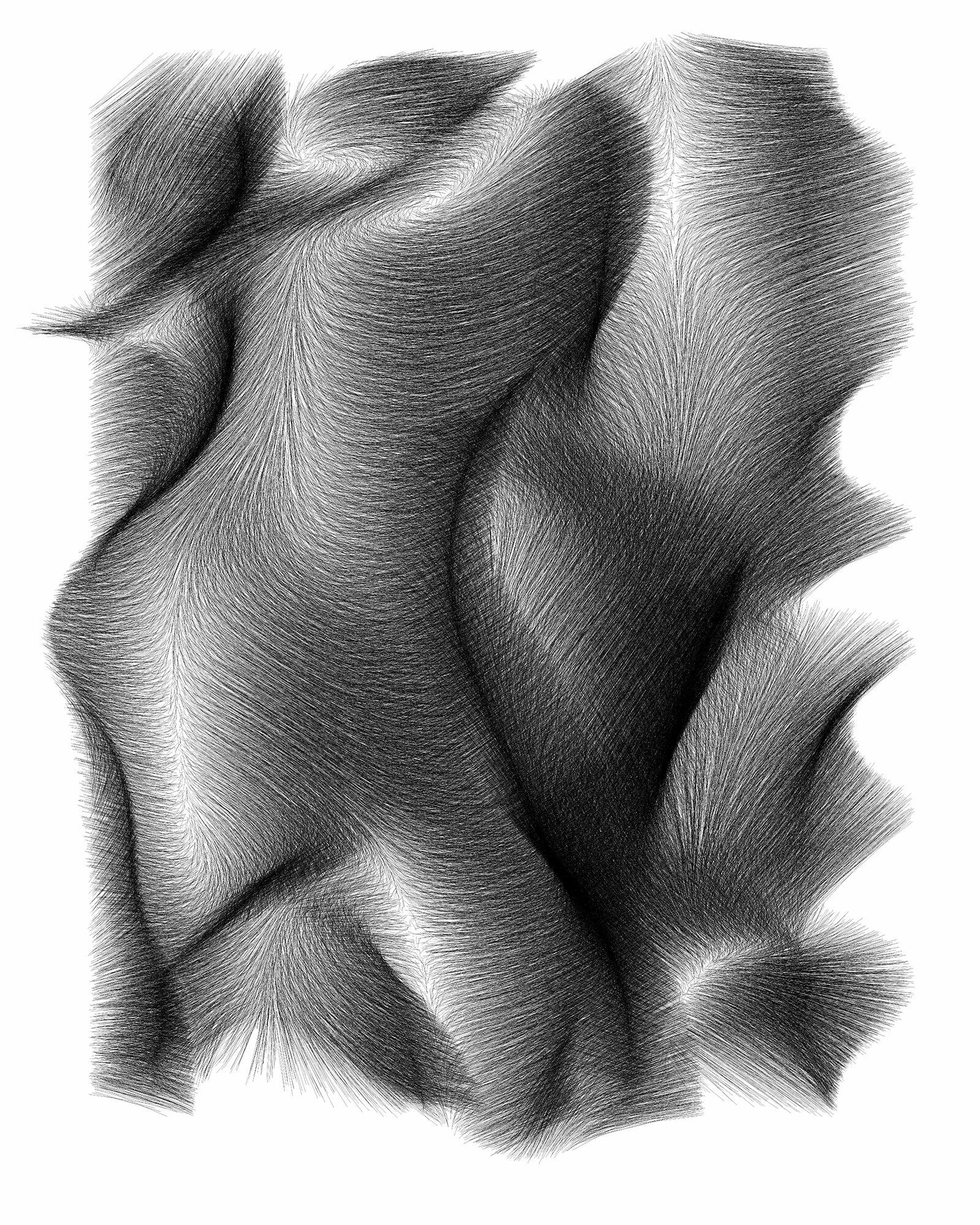 Vector Field no. 29.jpg