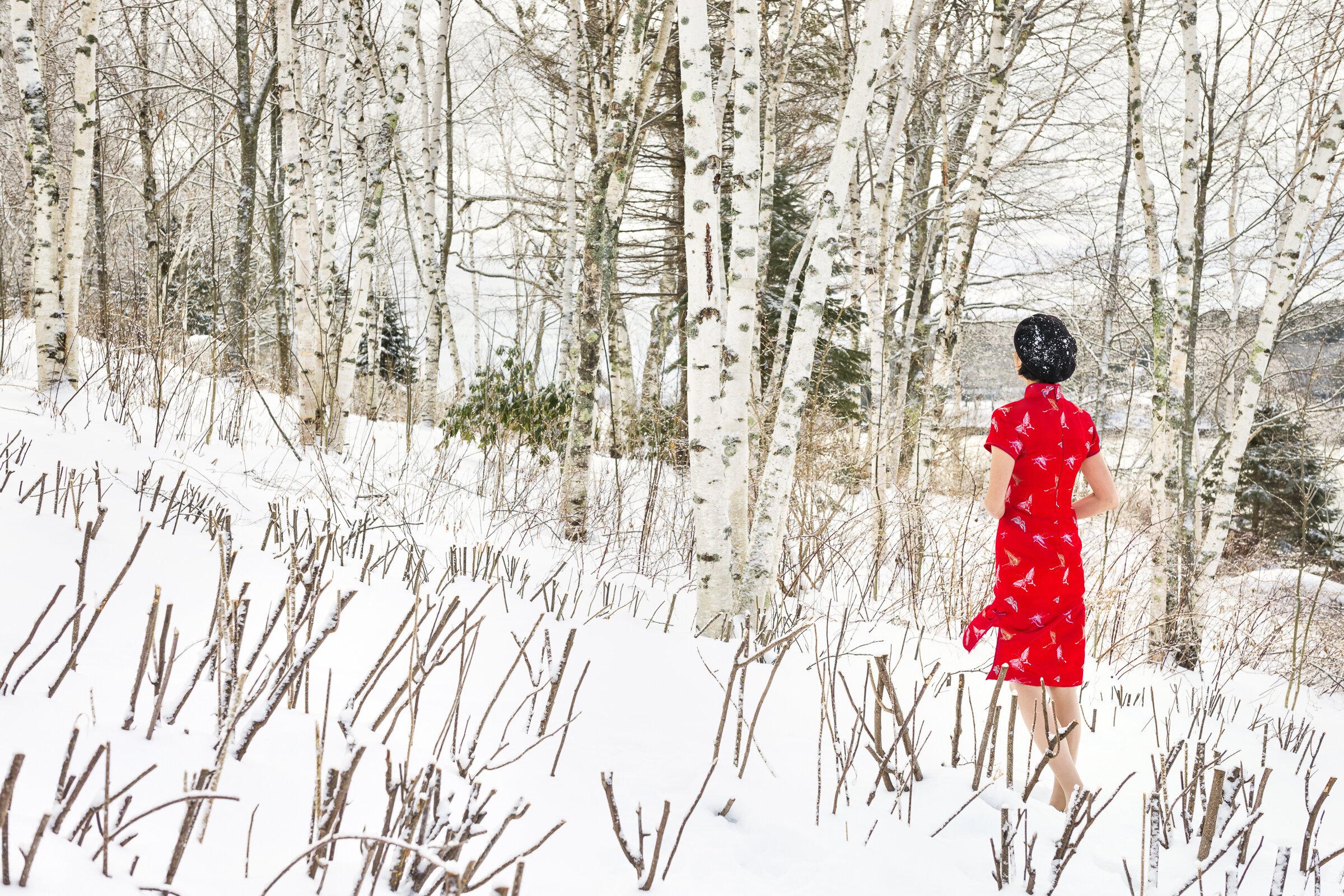 In America-Winter #11