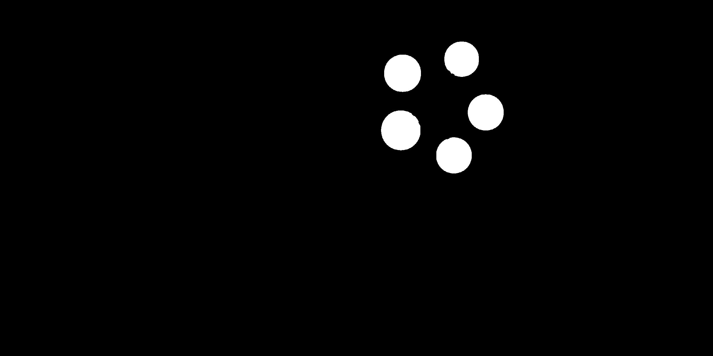 Gray + White Sponsor Logos v2-06.png