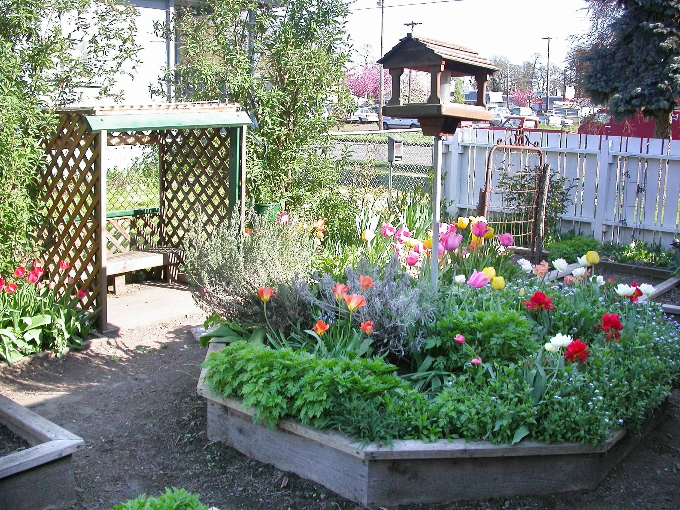 garden_30004254492_o.jpg